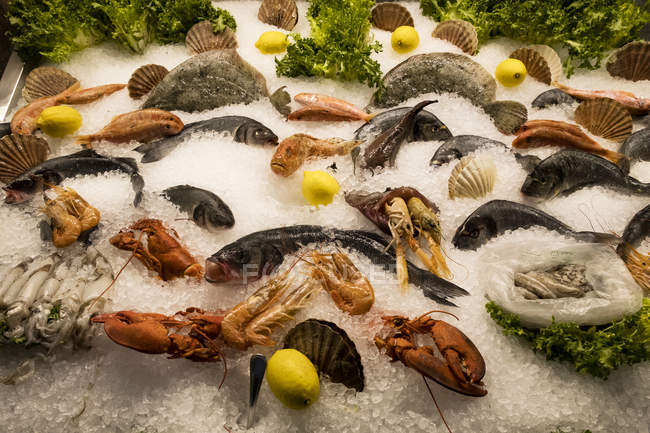High angle view of selection of fresh fishes and shellfish on ice at market stall. — Stock Photo