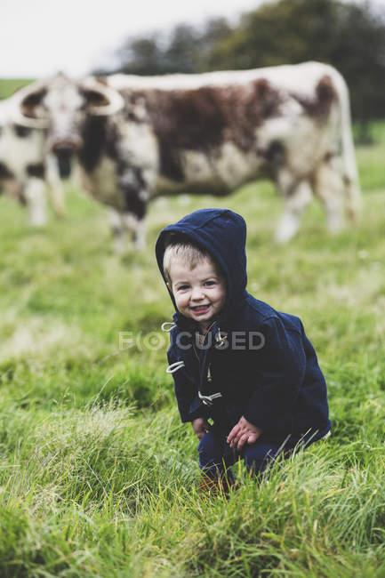 Niño de pie en pasto con vacas inglesas Longhorn en segundo plano. - foto de stock