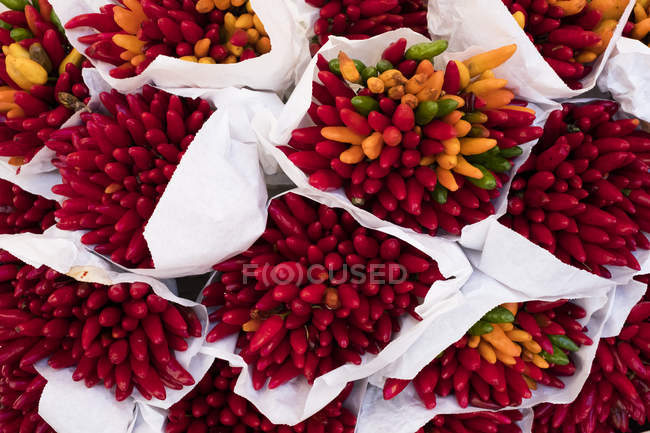 High angle close-up of large bunches of fresh red and orange chilies at Italian market stall. — Stock Photo