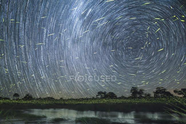 As fugas da estrela no céu na noite no banco do rio com vaga-lumes fugas sobre a água, Greater Kruger National Park, África. — Fotografia de Stock