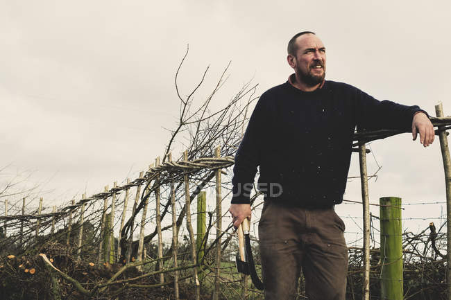 Smiling bearded man holding axe and bill hook standing next to newly built traditional hedge. — Stock Photo