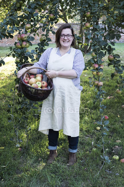 Woman in apron holding brown wicker basket with freshly picked apples, smiling in camera. — Stock Photo
