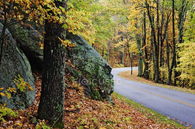 Strada attraverso la foresta autunnale con enormi pietre nei boschi — Foto stock