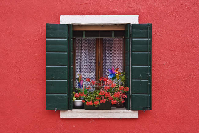 Open shuttered window in red wall with flowers — Stock Photo