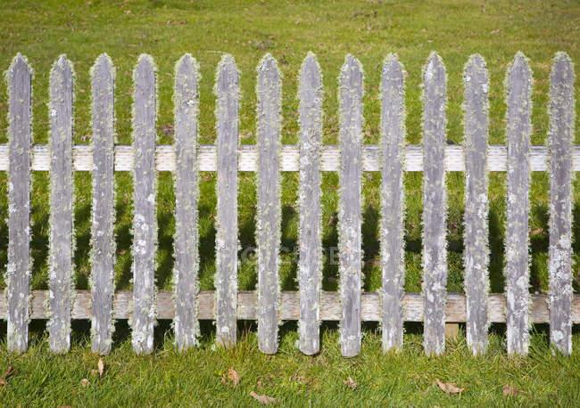 Старый традиционный забор, покрытый мхом в сельской местности — стоковое фото