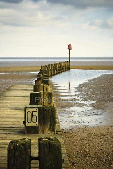 Pieux de jetée en bois au bord de l'océan et l'eau — Photo de stock
