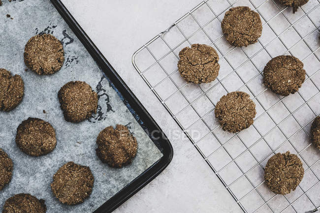 High angle view of freshly baked chocolate cookies on baking tray and cooling rack. — Stock Photo