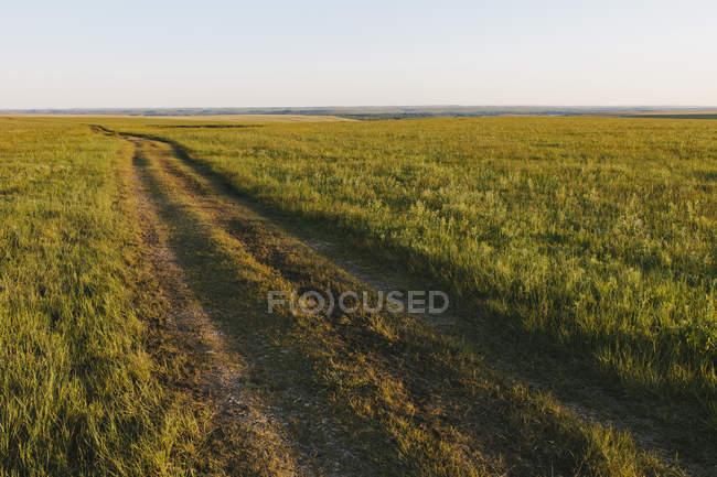 Vista sobre Tallgrass Prairie Preserve na primavera com grama exuberante e faixas em Great Plains, Kansas, EUA . — Fotografia de Stock