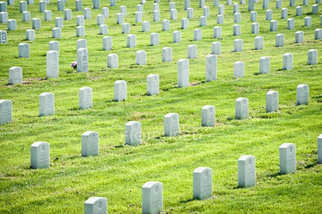 Reihen von Kriegsgräbern auf dem Kriegsfriedhof in Reichmond, Jungfrau, Vereinigte Staaten — Stockfoto