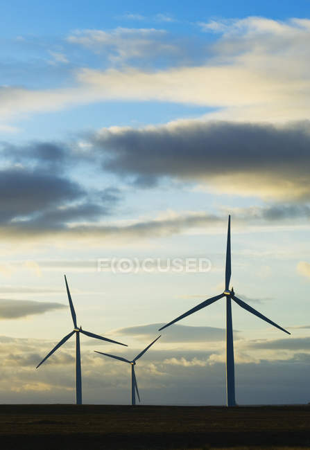 Wind turbines rotating in countryside field — Stock Photo