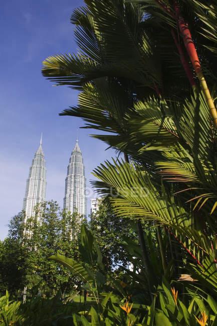 Petronas towers behind tropical foliage, Kuala Lumpur, Malaysia - foto de stock