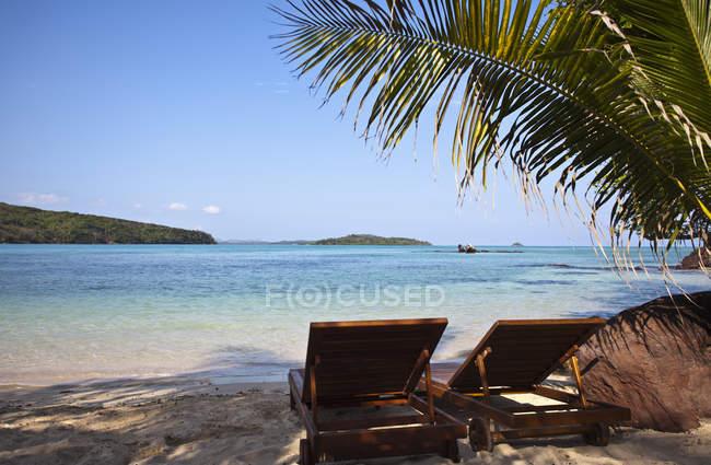 Тропическое побережье острова с пляжными стульями и пальмами — стоковое фото