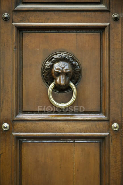 Porta Ornata Knocker, Firenze, Toscana, Italia — Foto stock