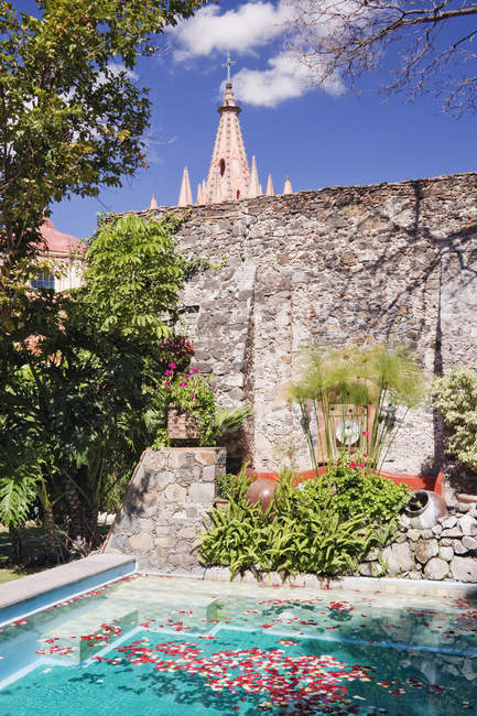 Басейн у готельному саду, Сан-Міґель-де-Альєнде, Гуанахуато, Мексика — стокове фото
