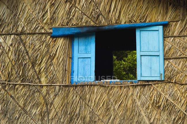 Blue shutters on palm-thached house, Mekong Delta, Vietnam, Asia — Stock Photo