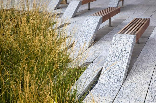 Реферат парк лавки і зелена трава на вулиці Нью-Йорка, Нью-Йорк, Сполучені Штати — стокове фото