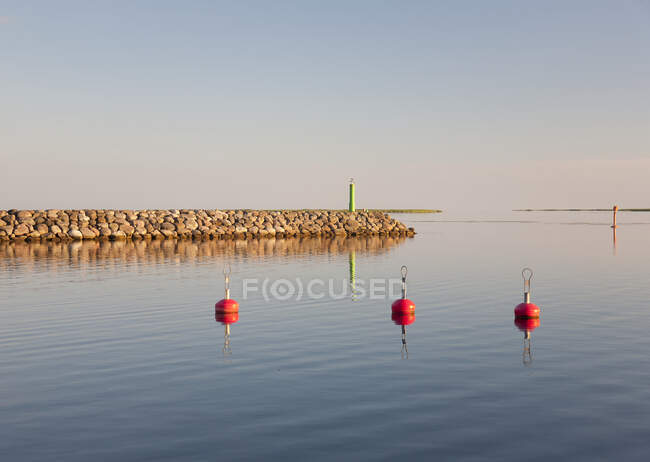 Close-up view of red buoys on water in a marina — Stock Photo