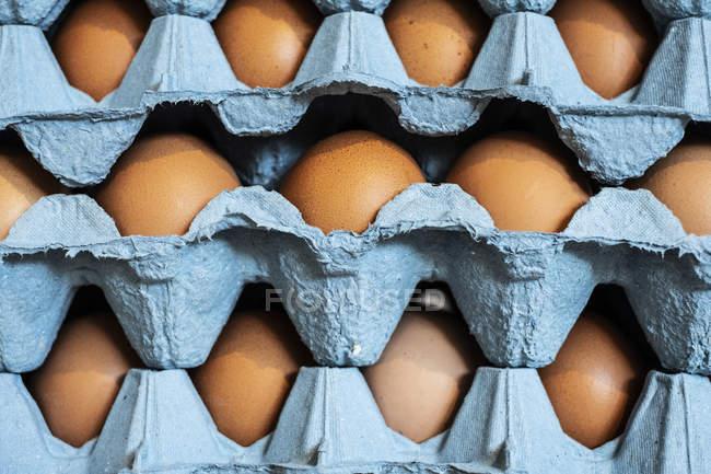 Gros plan plein cadre de la pile de cartons bleus avec des œufs de poulet brun . — Photo de stock