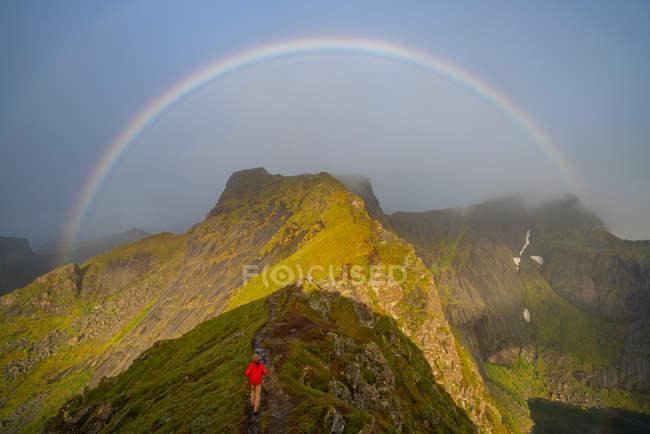 Человек карабкается к радуге на Лофотенских островах, Норвегия, Европа . — стоковое фото