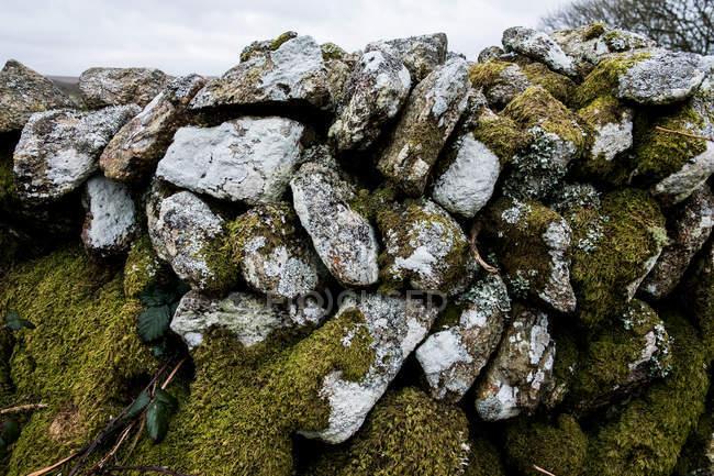 Крупный план каменной стены с камнями, частично покрытыми мхом, Корнуолл, Англия, Великобритания . — стоковое фото
