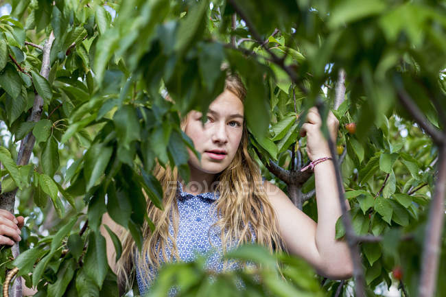 Blondes Teenager-Mädchen steht zwischen grünen Ästen. — Stockfoto
