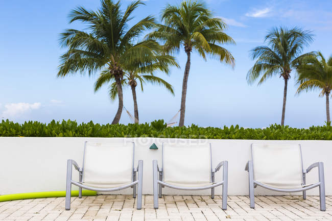 Pool chairs and palm trees, Grand Cayman Island — Stock Photo