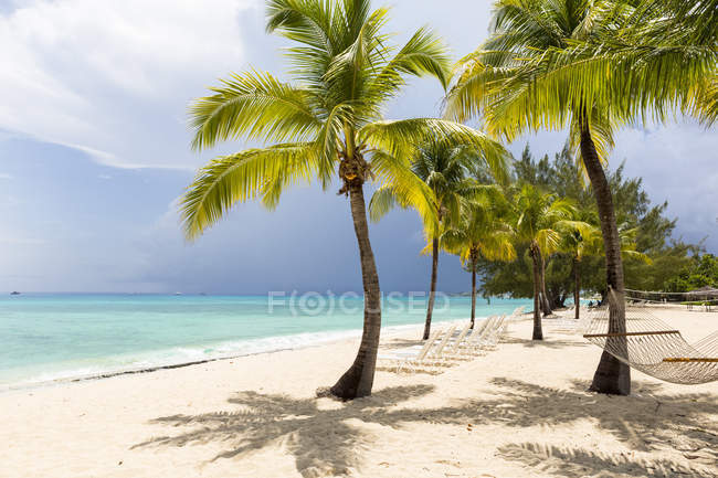 White sand beach, turquoise sea and palm trees. — Stock Photo