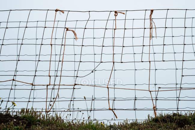 Крупный план сломанного забора сетки, предварительно закрепленного старой веревкой . — стоковое фото