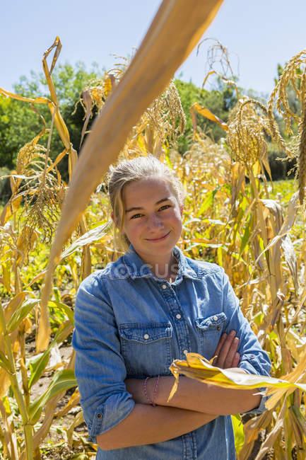 Retrato de adolescente mirando en cámara en campo de maíz - foto de stock