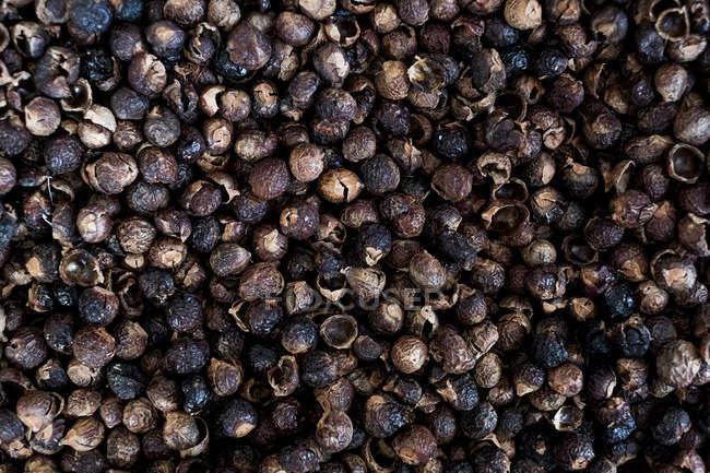 Hohe Nahaufnahme von getrockneten braunen Seifennüssen, Vollformat. — Stockfoto