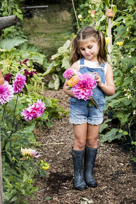 Fille portant dungarees denim debout dans le jardin, tenant Dahlias rose . — Photo de stock