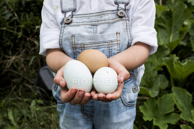 Close-up of girl standing outdoors, holding freshly laid eggs in hands. — Stock Photo