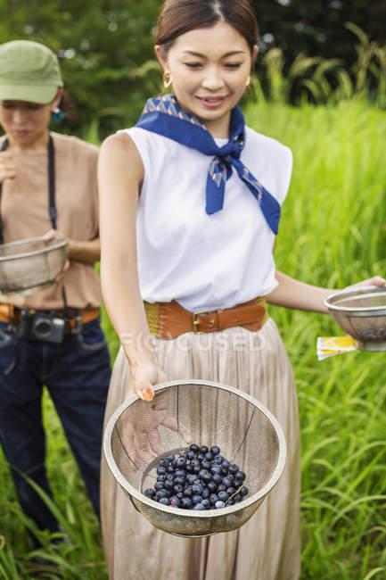 Deux Japonaises cueillant des baies dans un champ . — Photo de stock
