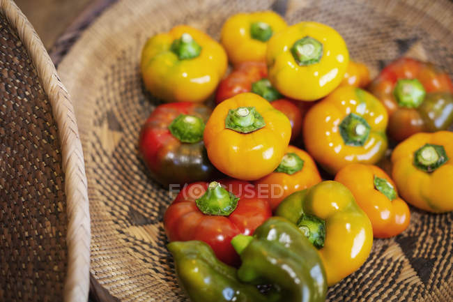 High angle close-up of a selection of fresh red and yellow peppers in a farm shop. — Stock Photo