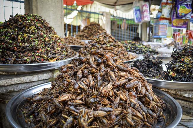 На продуктовому ринку в Камбоджі, де продаються таці з купою смажених екзотичних комах.. — стокове фото