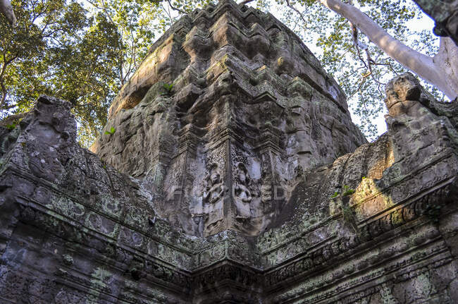 Ankor Wat, a 12th century historic Khmer temple and UNESCO world heritage site. Arches and carved stone with large roots spreading across the stonework. — Stock Photo