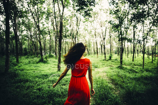 Rear view of young woman wearing red dress running in a forest. — Stock Photo
