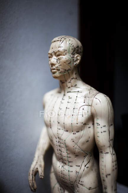 Close-up de manequim de acupuntura masculina mostrando pontos de pressão usados na medicina tradicional asiática . — Fotografia de Stock