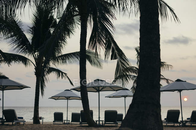 Beachside umbrellas at luxury resort on tropical island at sunset, Phu Quoc, Vietnam — Stock Photo