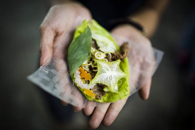 High angle close-up of hands holding fresh roll of vegetables wrapped in green leaf. — Stock Photo