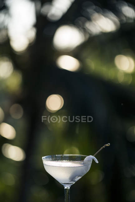 Close-up of glass of coconut alcoholic cocktail drink. — Stock Photo