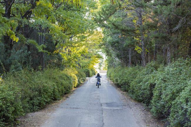 Vista trasera del niño que conduce su bicicleta por la carretera de campo - foto de stock