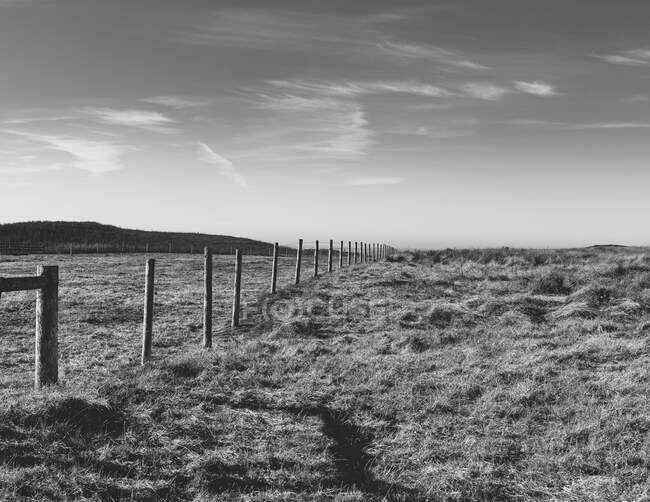 Забор через пастбища и сельхозугодия, открытое пространство — стоковое фото
