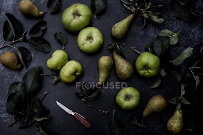 Alto angolo da vicino di pere verdi e mele Bramley su sfondo nero . — Foto stock