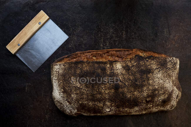 Close up of freshly baked loaf of bread in an artisan bakery. — Stock Photo