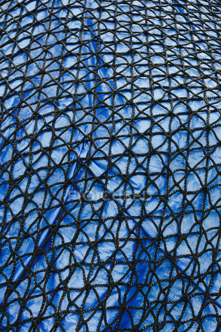 Dettaglio della rete da pesca commerciale che copre la tela cerata blu — Foto stock
