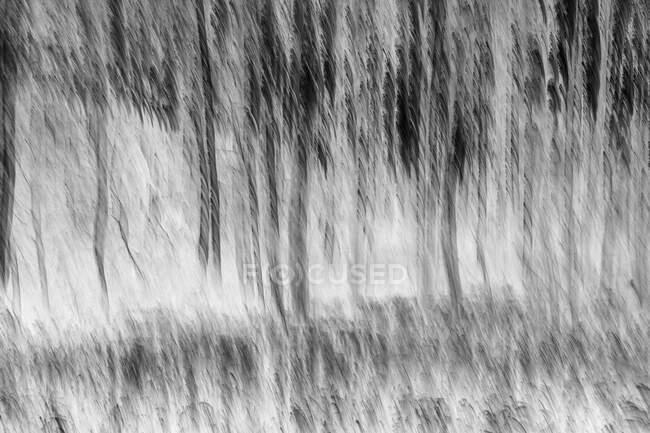 Verschwommener Aspenwald und Wiese in der Nähe von Leavenworth, Washington — Stockfoto