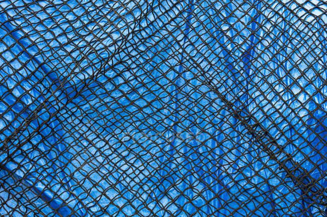 Detail eines kommerziellen Fischernetzes mit blauer Plane — Stockfoto
