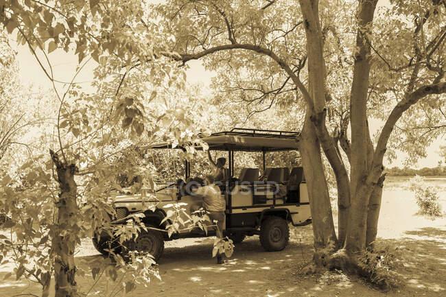 Safari veicolo, Moremi Reserve, Botswana — Foto stock