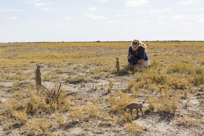 Fille de 12 ans regardant Meerkats, désert du Kalahari — Photo de stock